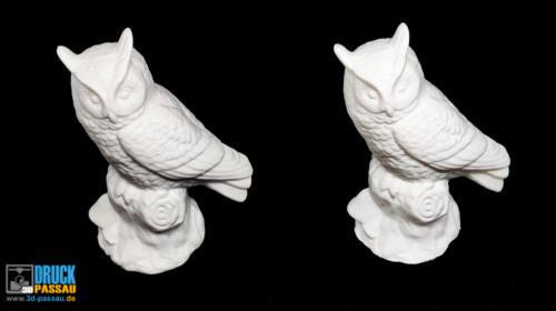 3D-Scan_Eule-2