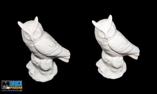 3D-Scan_Eule-3