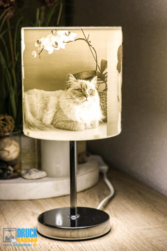 3D-Lampe-1