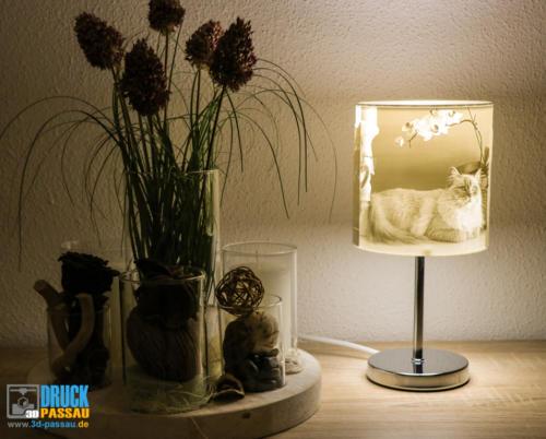 3D-Lampe-2