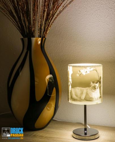 3D-Lampe-6
