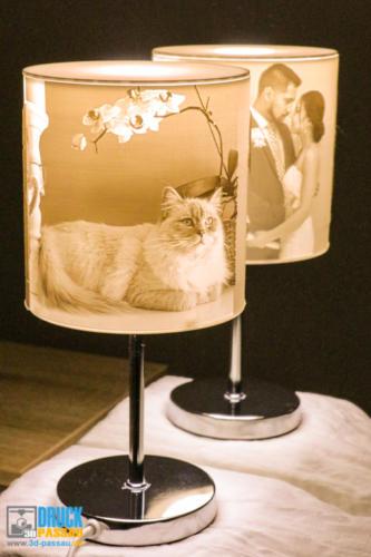 3D-Lampe-8